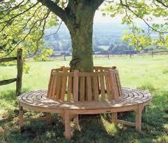 tree bench1